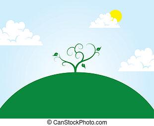 colina, árbol