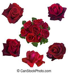 Collage de rosas rojas
