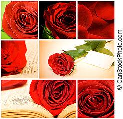 Collage de varias rosas rojas