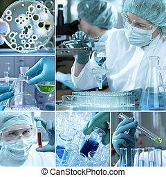 Collage del laboratorio