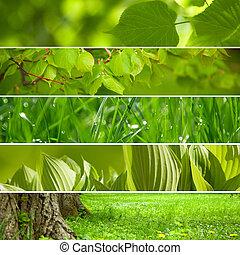 Collage naturaleza verde fondo.