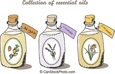 collection., salud, árbol, argan, naturaleza