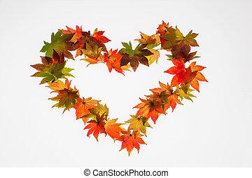 Coloridas hojas de otoño en forma de corazón
