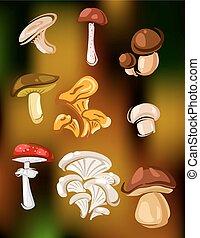 Colorido conjunto de setas vectoriales y hongos