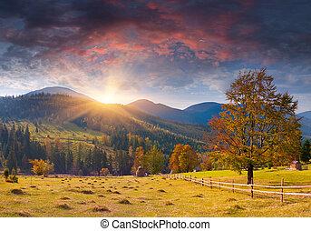 Colorido paisaje de otoño en las montañas. Al amanecer