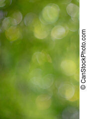 Colorido verde natural fondo borroso con efecto bokeh.