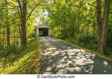 Colville cubrió el puente 5