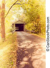 Colville cubrió el puente, al estilo Instagram