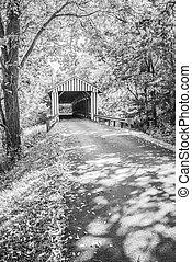 Colville cubrió el puente, Büw 4