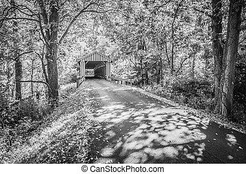 Colville cubrió el puente