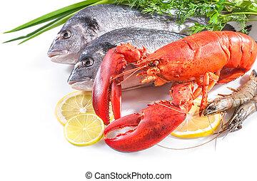 Comida marina en fondo blanco