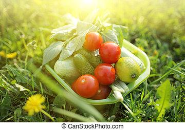 Comida orgánica al aire libre