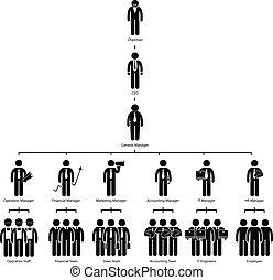 Compañía de gráficos de organización