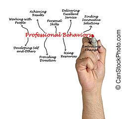 Comportamientos profesionales