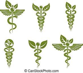 compuesto, alas, serpientes, venenoso, theme., colección, conceptual, vector, caduceo, atención sanitaria, medicina, alternativa, ilustraciones, pájaro, illustrations.