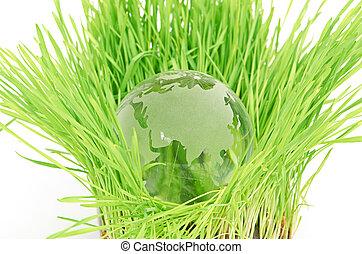 Concepto ambiental