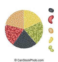 concepto, conjunto, frijoles, gráfico, pastel