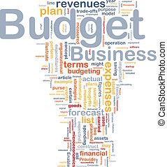 Concepto de fondo presupuestario