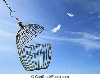 Concepto de libertad. Escapando de la jaula