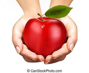concepto, manzana, maduro, ed, diet., vector., hands.