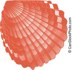 concha marina, imagen, vector