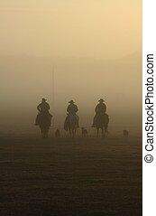 Conduce ganado con niebla