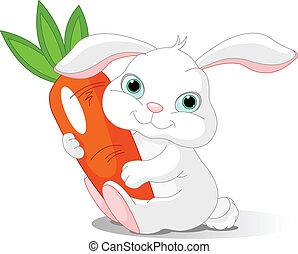 Conejo tiene zanahoria gigante