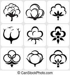 conjunto, algodón, icono