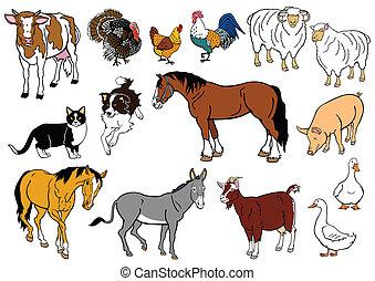 conjunto, animales, granja