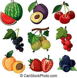 conjunto, delicioso, berries.