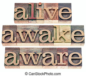 consciente, despierto, vivo