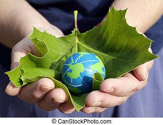 conservación, ambiental