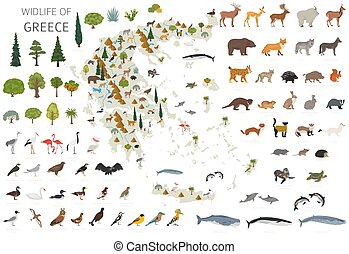 constructor, plantas, infographics, blanco, aves, elementos, poseer, wildlife., su, construya, colección, aislado, diseño, set., animales, geografía, grecia, plano