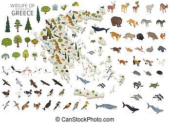 construya, diseño, animales, isomatric, blanco, poseer, wildlife., su, aislado, grecia, infographics, aves, elementos, set., geografía, plantas, constructor, 3d, collection.