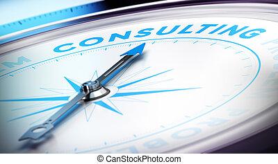 Consulta de negocios