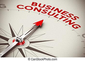 Consultor de negocios