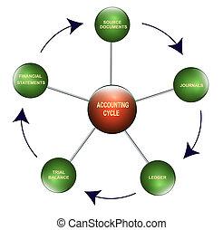 contabilidad, ciclo