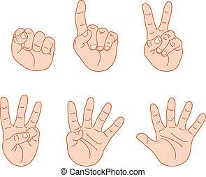 contar, dedos