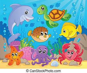 coral, tema, 5, imagen, arrecife