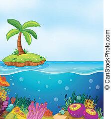 Coral y palmera en la isla