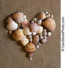 corazón, arena, cáscara