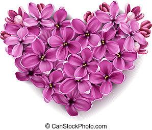 corazón, flores, lilac.