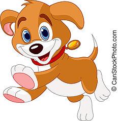 Corriendo cachorrito gracioso