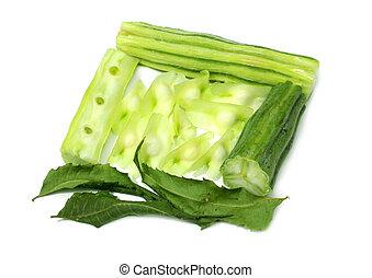 Cortado moringa oleifera con hojas de neem secas