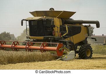 cosechar, agriculture., paja, trigo, polvo, heagy, segador, aire., field., dorado, maduro, combinar, machinery., agrícola, máquina, agricultura