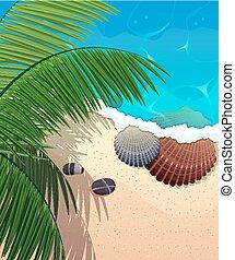 Costa del océano con ramas de palma