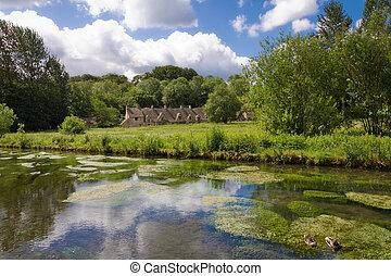 cotswolds, arlington, bibury, gloucestershire, coln, reino unido, río, fila