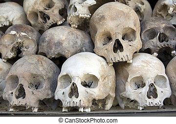 Cráneos y huesos en el campo de batalla