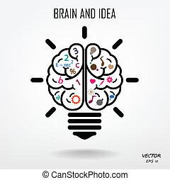 creatividad, empresa / negocio, conocimiento, cerebro, creativo, icono, señal, símbolo, educación