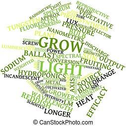 Crece la luz